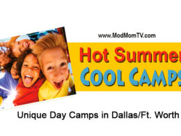 dallas day camps
